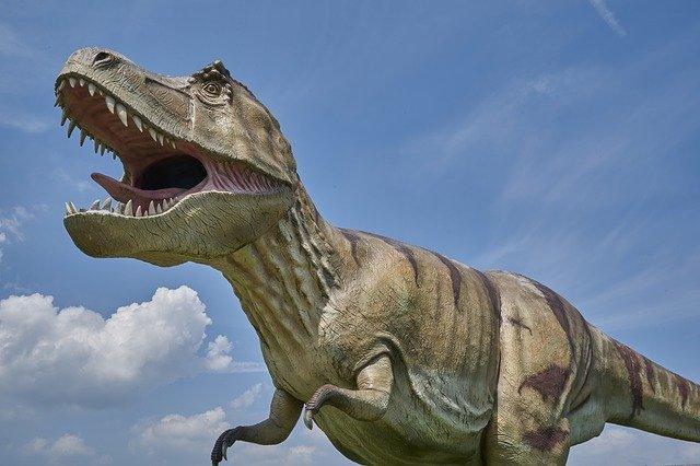 Décorer sa chambre d'enfant avec des dinosaures